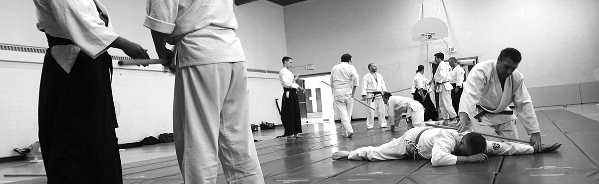 Bring a friend to aikido